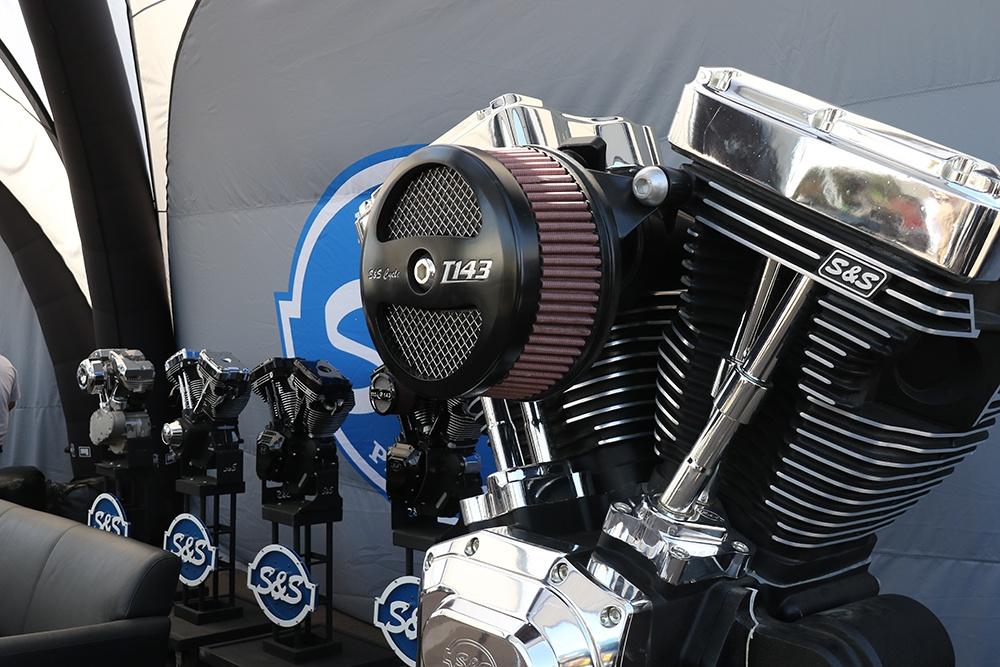 8M2A2597